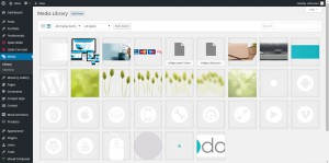 Manage Media Files in WordPress CMS